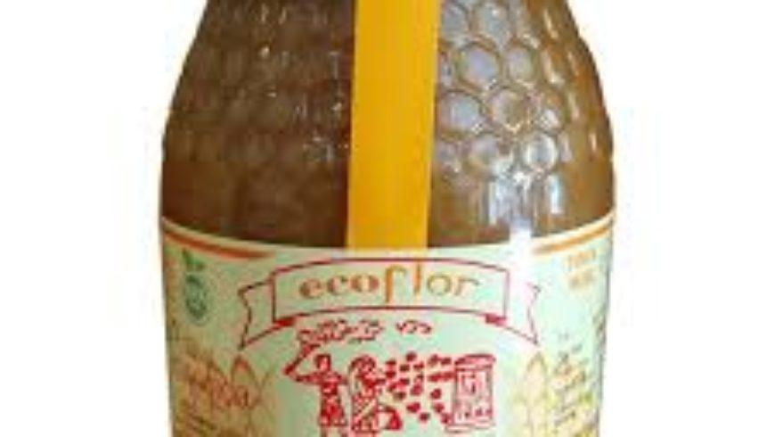 Miel de Castaño Ecológica – Ecoflor Ecólogica