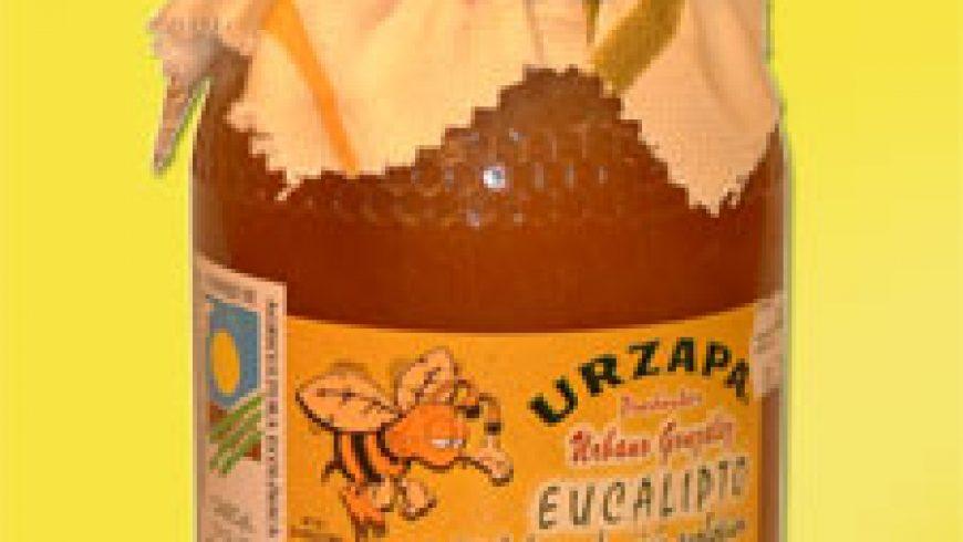 Miel de eucalipto – Urzapa Ecologica